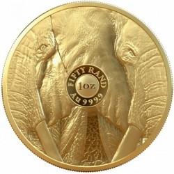 Big Five - Az Öt Nagy - Elefánt 2019 1 uncia proof arany pénzérme