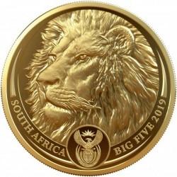 Big Five - Az Öt Nagy - Oroszlán 2019 1 uncia proof arany pénzérme