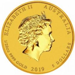 Lunar2 Disznó éve 2019 1/20 uncia arany pénzérme