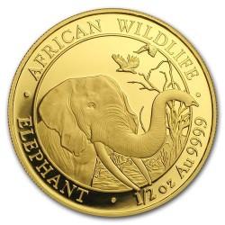 Szomália Elefánt 2018 1/2 uncia arany pénzérme