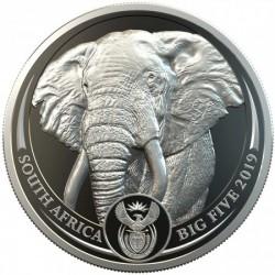 Big Five - Az Öt Nagy - Elefánt 2019 1 uncia proof platina pénzérme