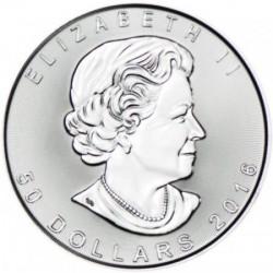 Maple Leaf Juharlevél 2021 1 uncia platina pénzérme