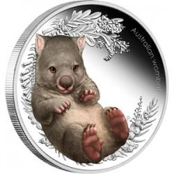 Bush Babies2 - Wombat 2013 1/2 uncia színes ezüst pénzérme