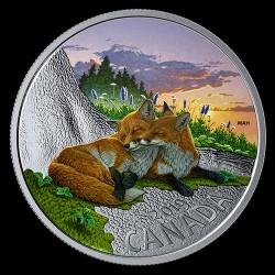 Kanada állatai - Róka 2019 1 uncia proof ezüst pénzérme