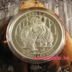 Grizzlymedvék - Együttlét 2015 1 uncia kanadai proof ezüst pénzérme