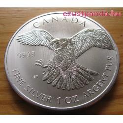 Vándorsólyom / Peregrine Falcon 2014 1 uncia ezüst pénzérme