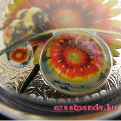 Nagyítás: Szépség a nap alatt - 2017 1 uncia kanadai proof ezüst pénzérme