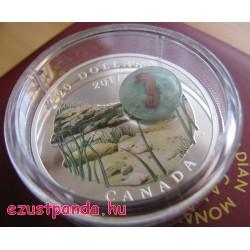 Tenger alatti világ - Tengeri csikó 2017 1 uncia kanadai proof ezüst pénzérme boroszilikát üveggel