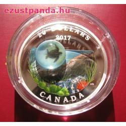 Tenger alatti világ - Tengeri teknős 2017 1 uncia kanadai proof ezüst pénzérme boroszilikát üveggel