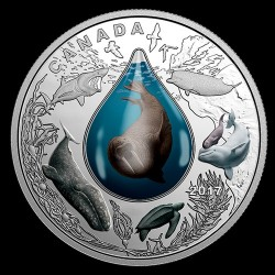 Élet a víz alatt - 2017 1 uncia kanadai proof ezüst pénzérme