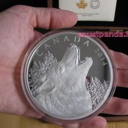 Üvöltő Farkas / Howling Wolf  0,5 kg proof ezüst pénzérme