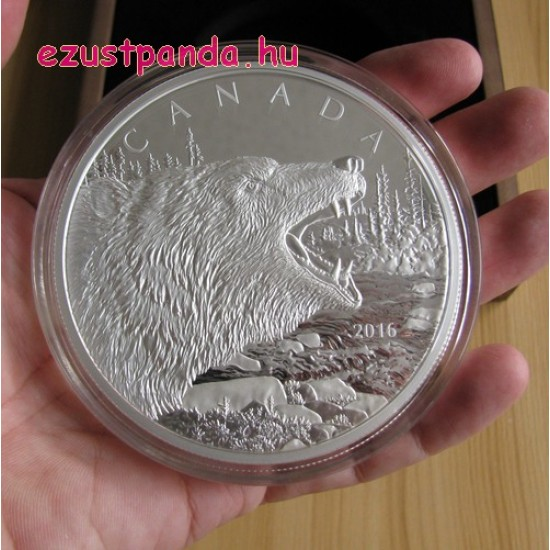 Ordító Grizzly / Roaring Grizzly 2016 0,5 kg proof ezüst pénzérme