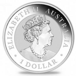 Koala 2019 1 uncia ezüst pénzérme