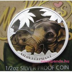Anyai szeretet - Elefánt 2014 1/2 uncia színes ezüst pénzérme