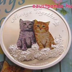 Mindig együtt - Cicák - Always Together 2015 1/2 uncia színes ezüst pénzérme